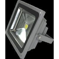 LED Accent 42 Watt Flood Light